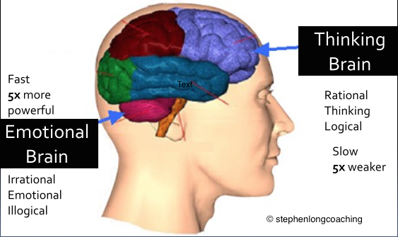 História: Cérebro emocional e cérebro pensante - representação.