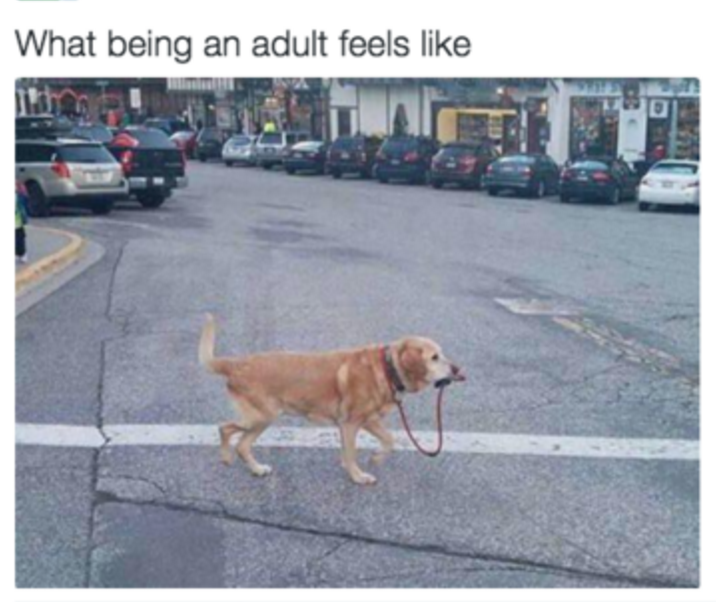 Adulting is hard, we know.