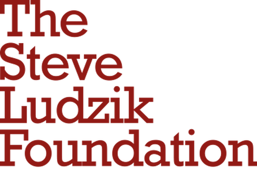 the steve ludzik foundation