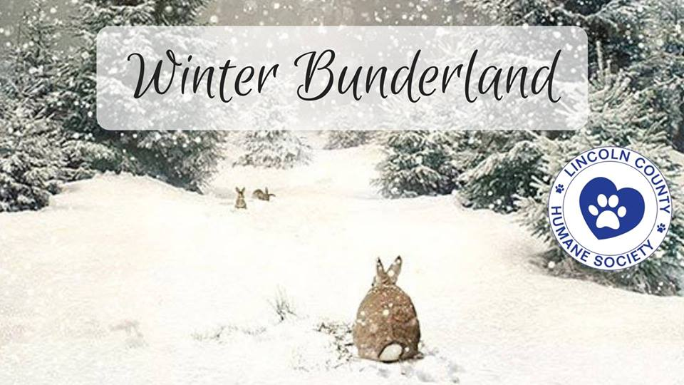 Winter Bunderland, Lincoln County Humane Society