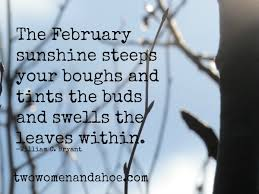 Poem: The February sunshine steeps your boughs and tints the buds and swells the leaves within.