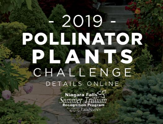 """A lush green garden path. """"2019 Pollinator Plants Challenge,"""" Summer Trillium logo."""