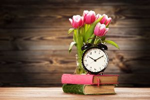 An alarm clock and pink tulips