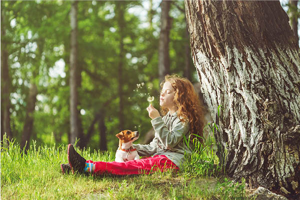 A young girl and her dog sit in a park under a large tree.