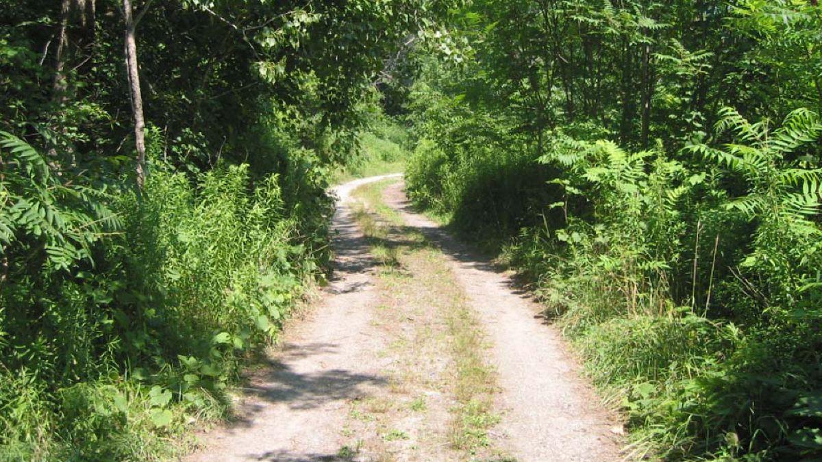 Baden Powell Park trail