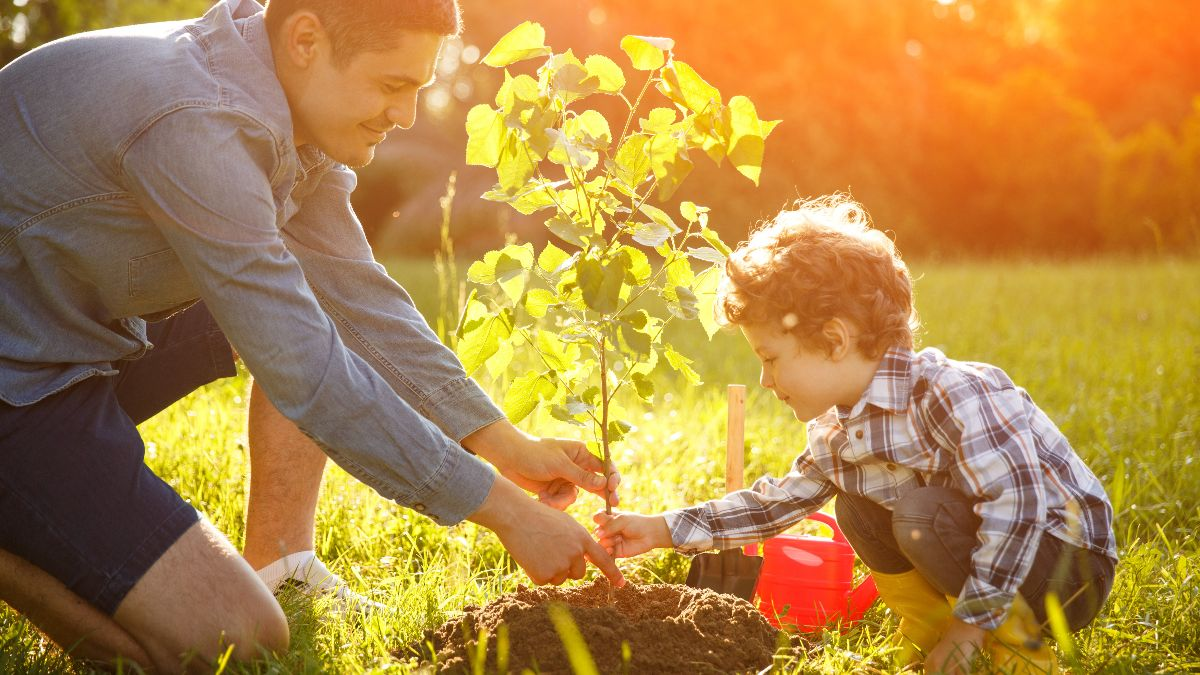 man and son planting tree outside