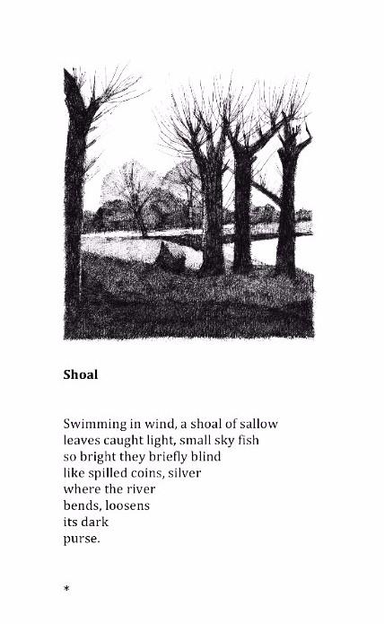 Shoal © Jake Attree & Robert Powell
