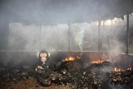 Burned hut at J.A.C.K.