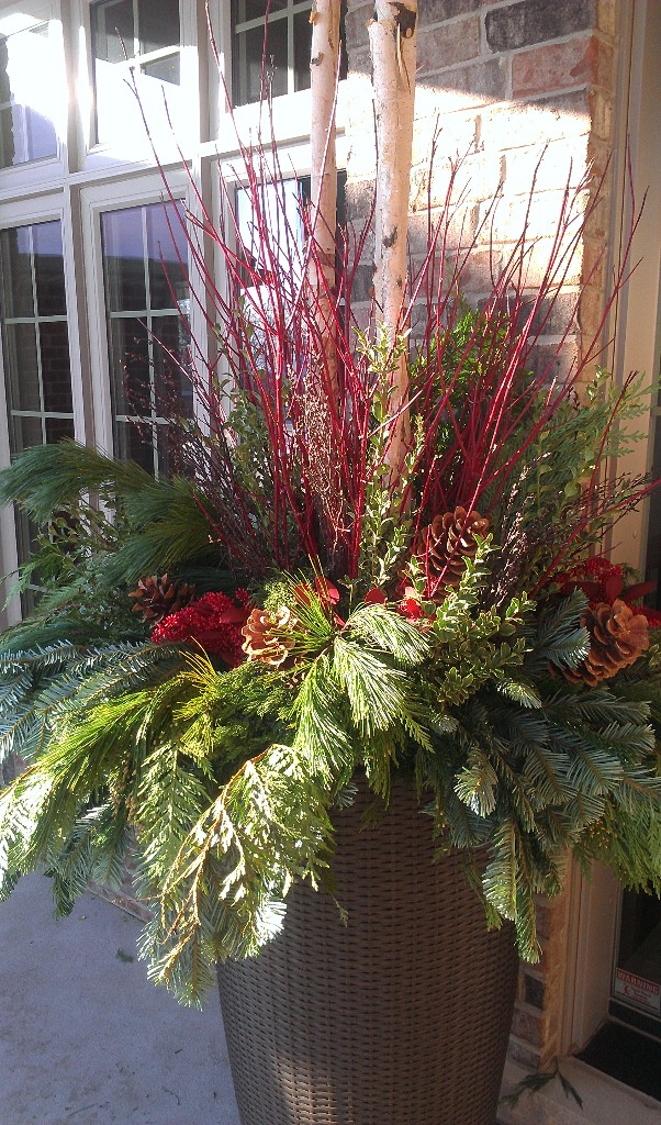 A stunner with oregonia, red cedar, silver fir, and dogwood.