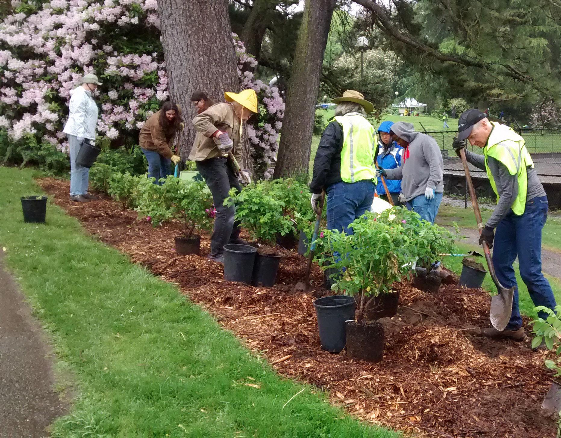 Image: Spring Restoration Day