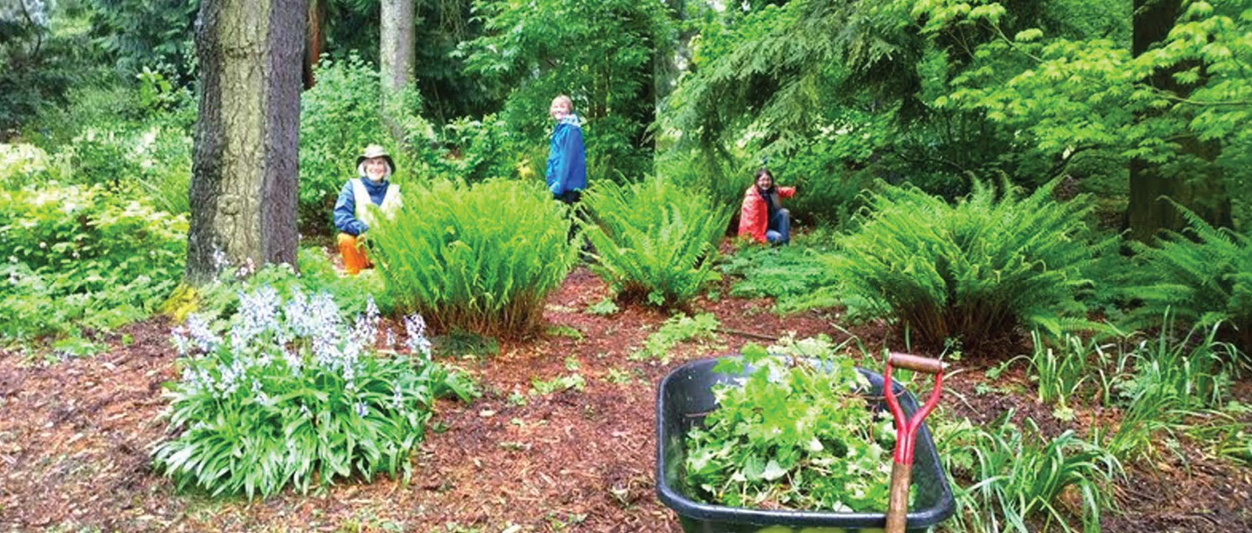 Spring Restoration Day Volunteers Gardening