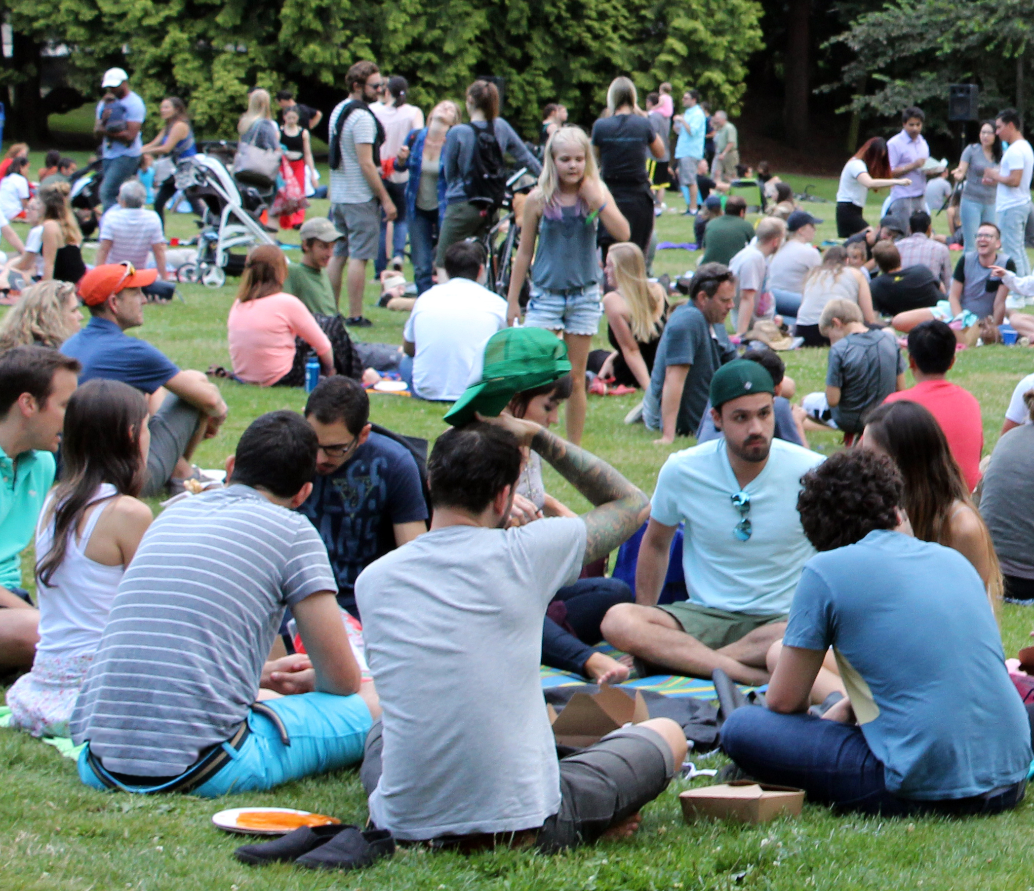 2016 Picnic in the Park