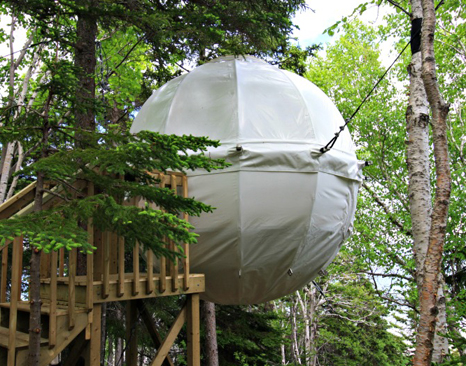 Parks Canada Introduces The Cocoon Tree Bed