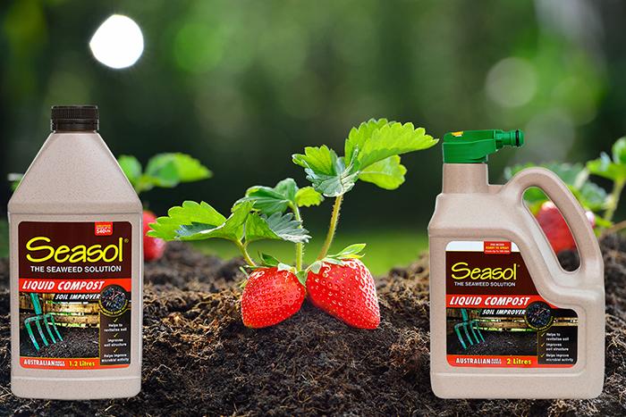Seasol liquid compost