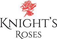 Knights Roses