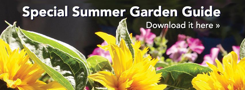 Summer garden guide – download