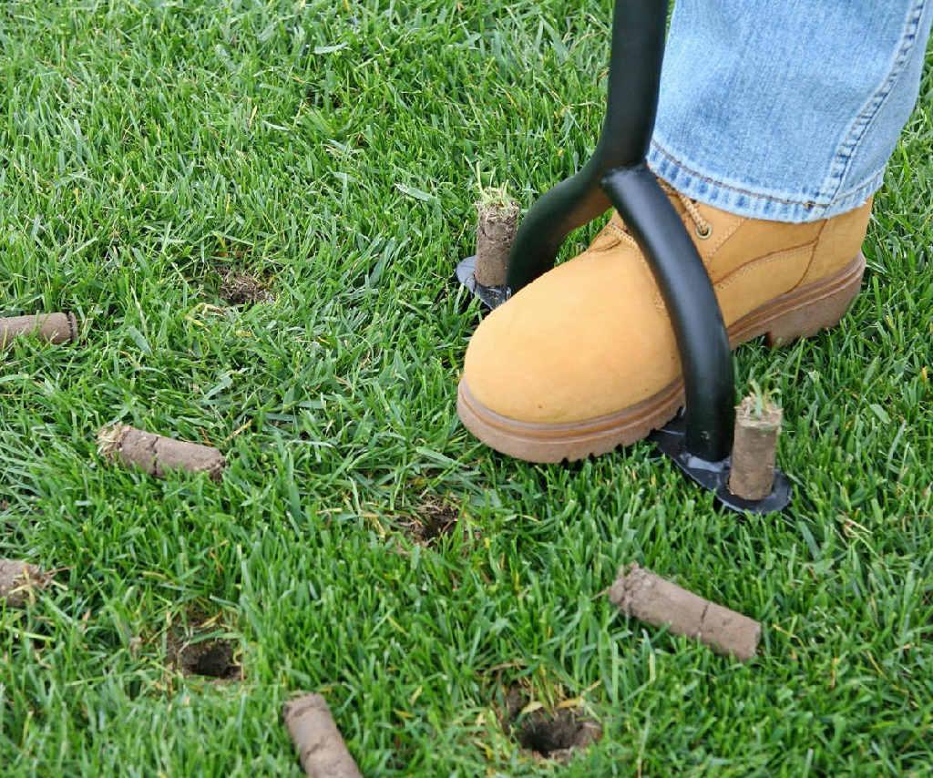 Lawn coring