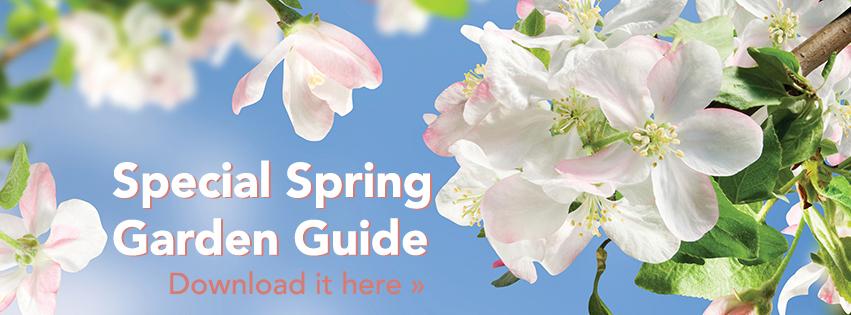 Spring garden guide - download