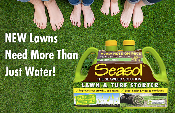 Seasol lawn & turf starter