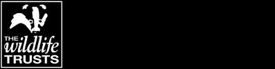 41d56921-f54f-451c-9a17-d6eb2bd08e43.png