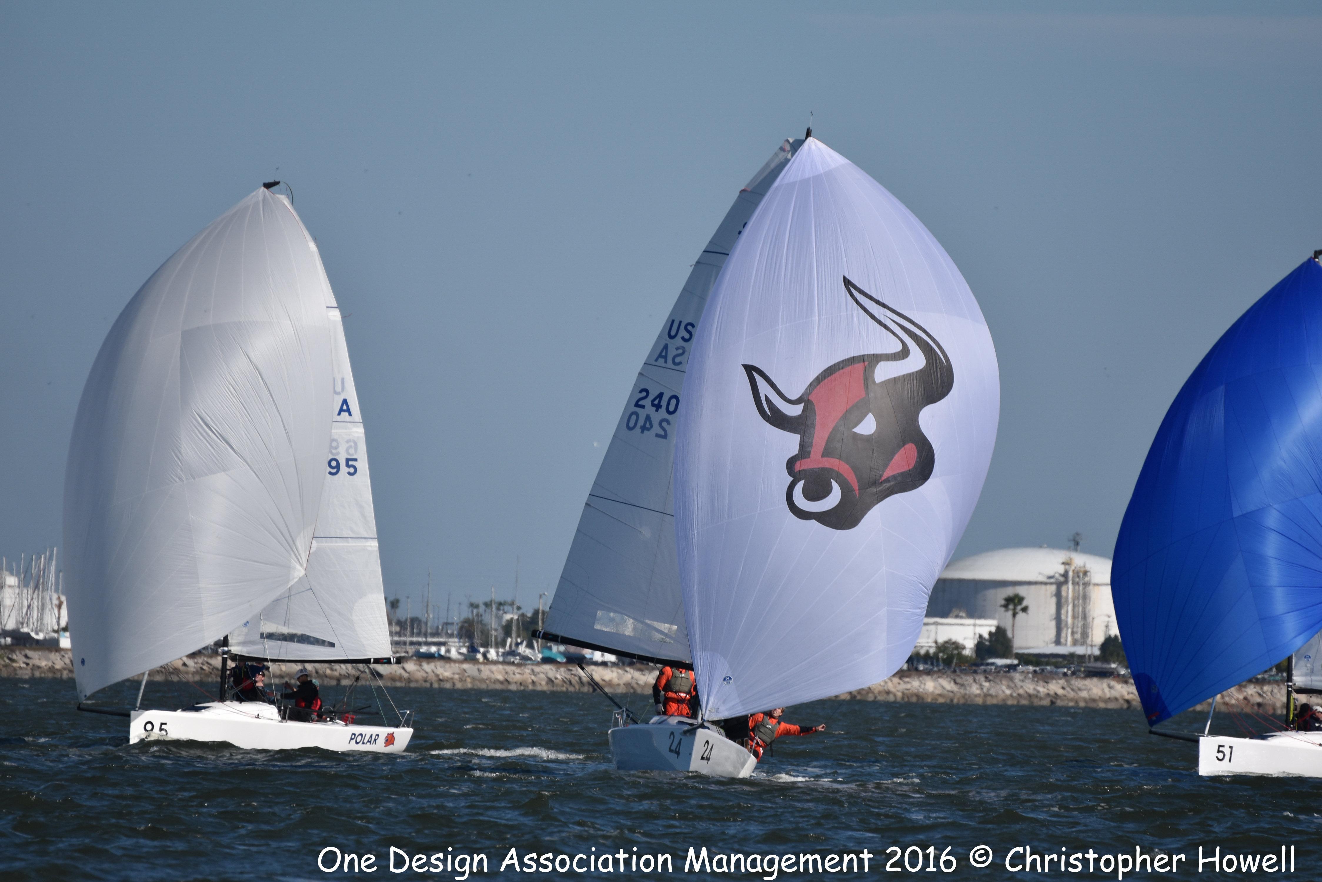 J/70 Stampede sailing Tampa Bay