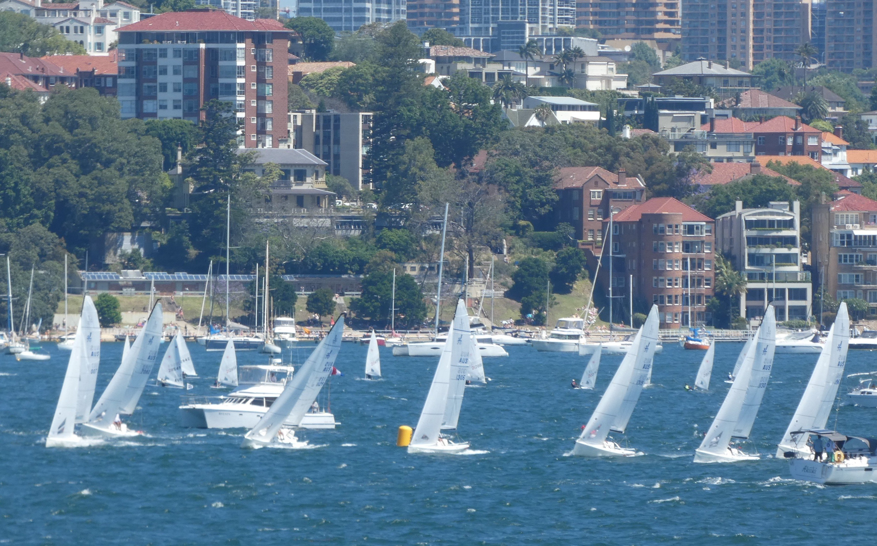 JUNO Tops J/70 NSW State Championships