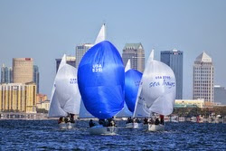J/24 sailboats- sailing off Tampa, Florida