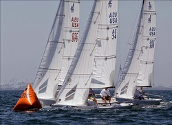 J/70 sailing Long Beach Race Week