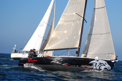 J/105 Panther sailing Dutch Two-handed Nationals
