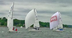 J/70s sailing the Sail Newport Regatta