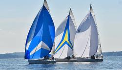 J/105s sailing Long Island Sound
