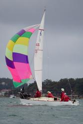 J/24 sailing off Sydney, Australia