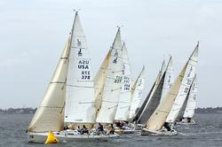 J/Fest J/80 fleet