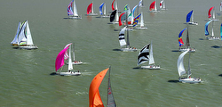 A Fun Great Vallejo Race