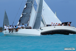 J/11S sailing Antigua Valentine's Regatta