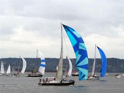 J/160 sailing Southern Straits race