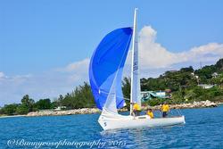 J/22 Cayman Island team sailing Caribbean