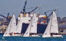 J/70s sailing San Diego NOOD regatta