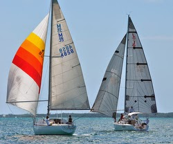 J/95 sailing downwind- Abacos, Bahamas- against competitors