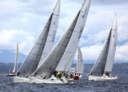 J/105 fleet sailing Three Tree Point race