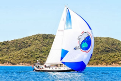 J/160 Salacia sailing off Australia