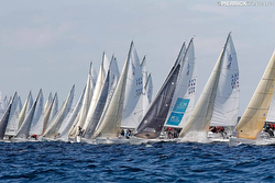 J/80s sailing World Championship