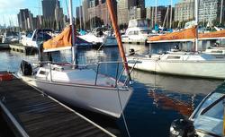 J/22 Chicago Sail fleet off Columbia YC