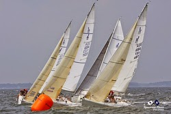 J/80 sailboats- sailing Buzzards Bay regatta