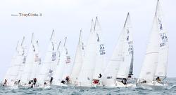 J/24 sailboats- sailing start at Pasquevela in Santo Stefano,  Italy
