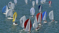 J/80 sailboat- sailing SPI Ouest France regatta