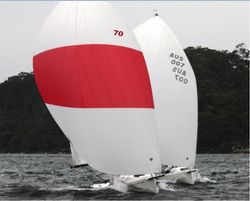 J/70s sailing in Sydney Harbour