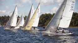 J/80 sailboats- sailing at start in Stockholm, Sweden