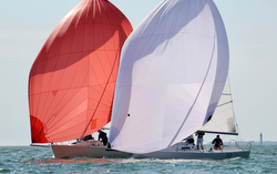 J/80s sailing with spinnakers