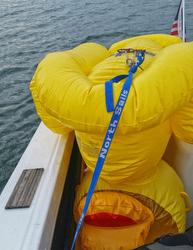 duck duck buoy